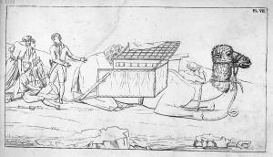 Ambulance volante installée sur le dos d'un chameau Mémoires de chirurgie militaire et campagnes